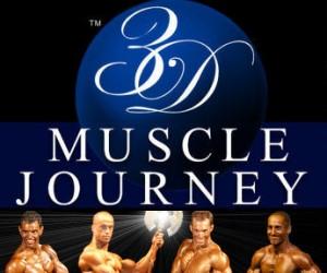 3d-muscle-journey